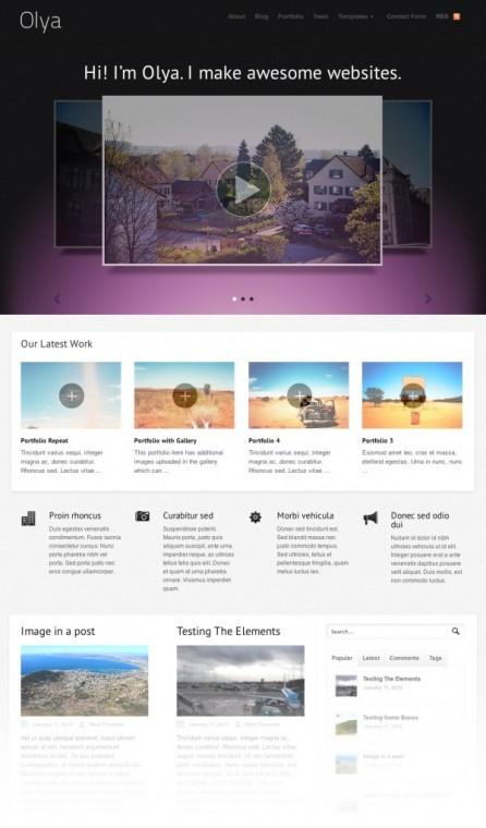 Olay Portfolio WordPress Theme
